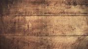 Calidez, o cómo convertir una vivienda en un hogar